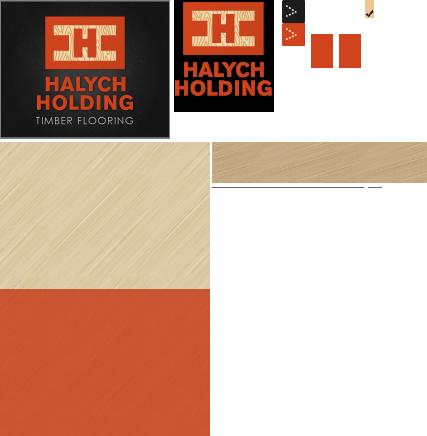 Halych Holding